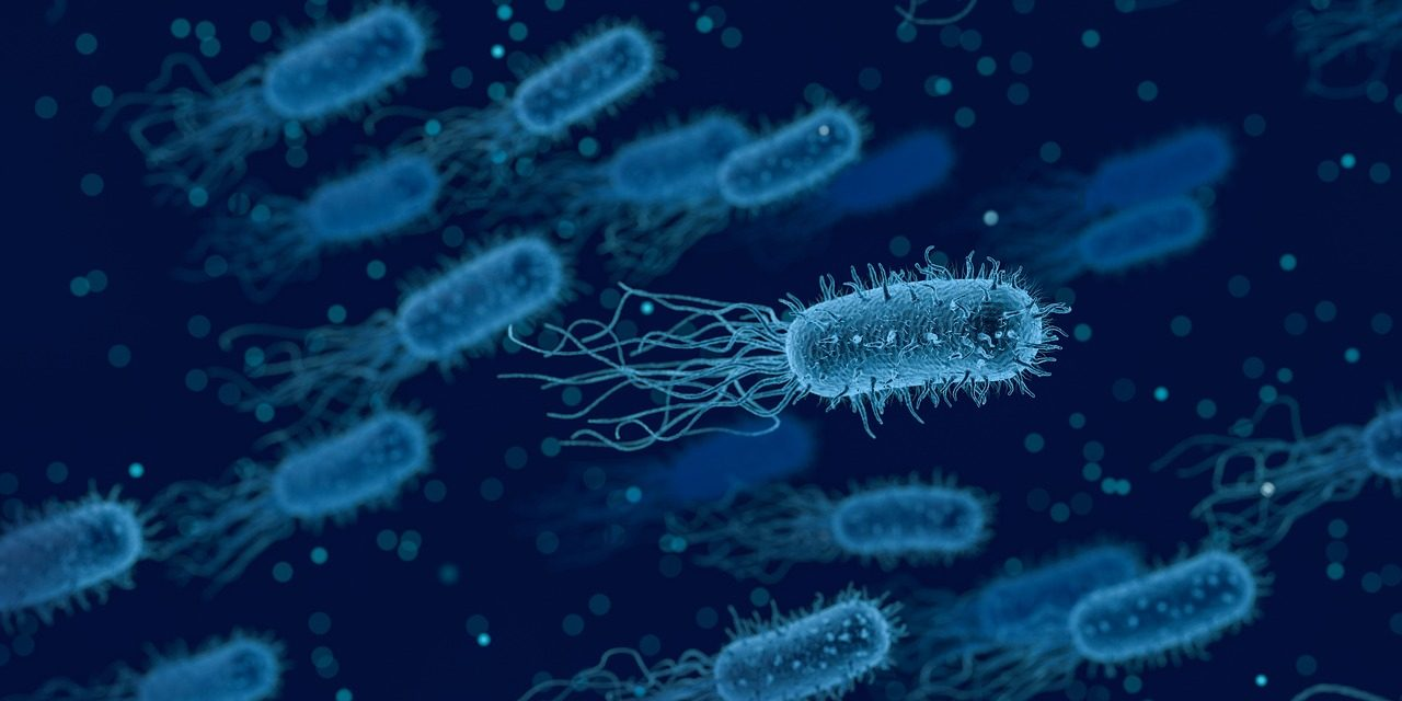 The Bacterial Infection Treatment Of RedHill Gets Green Signal From FDA